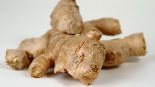 GINGER ROOTS – HEALTH BENEFIT – THE WONDER SPICE